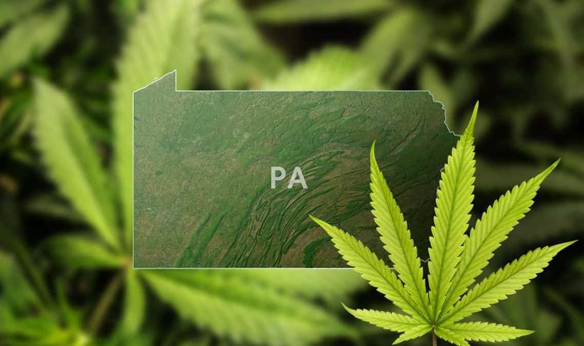 Two Senators of Pennsylvania File a Bill to Legalize Marijuana
